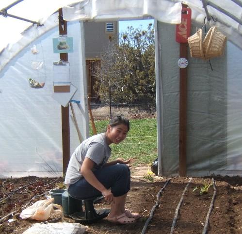 WWOOFer Rachel planting peas