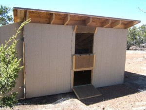 The New Chicken Coop